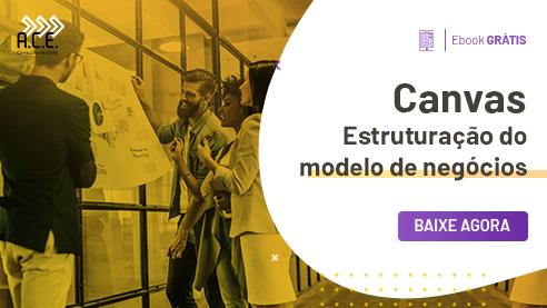 Ebook - Canvas: Estruturação do modelo de negócios